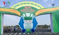 The 4th Vietnam Rice Festival – Vinh Long 2019 opens