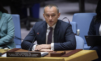 UN envoy: Jewish settlements in occupied Palestinian territory harms two-state solution