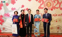 Vietnamese communities abroad celebrate Tet