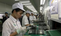 Recommendations for EU-Vietnam FTA, IPA adopted
