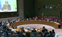 Vietnam expresses willingness to help countries in post-conflict transitional period