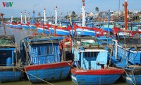 Quang Ngai: fishermen actively install fishing boat monitoring devices