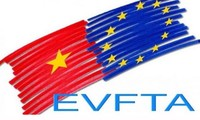 Report on EVFTA clarified to National Assembly
