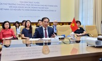 Online conference on Vietnam's investment and trade opportunity in post-COVID 19