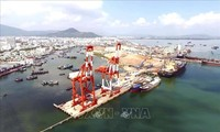 Sea route linking Quy Nhon port with northeast Asia inaugurated