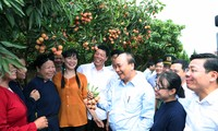 Prime Minister Nguyen Xuan Phuc attends a ceremony to promote lychee exports