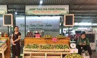 Localities promote summer agricultural products