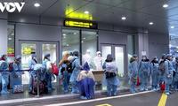 350 Vietnamese citizens repatriated from Japan