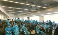 More Vietnamese citizens flown home from Australia