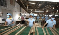 Vietnam's timber products maintains its export market