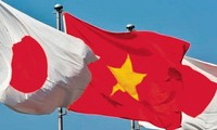 Vietnam plays important role in Japan's foreign policy toward ASEAN: Japanese official