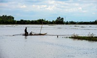 Farmers in Mekong Delta province of An Giang wait for floodwaters