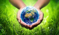 Global effort to cope with climate change