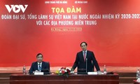 Vietnam diplomatic missions join efforts with provinces in international integration