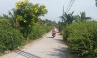 Son Dong commune, Ben Tre province, full of new vitality