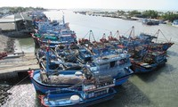 Vietnam makes progress in fight against IUU fishing
