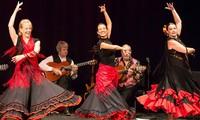 Flamenco, a traditional folk dance of Spain
