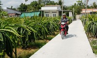 Tan An City, Long An province to complete new rural area building