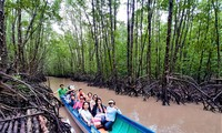 Mangrove trees help farmers in Ca Mau escape poverty
