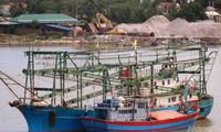 Vietnam to apply electronic fishing dairy