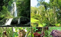 Nui Chua and Kon Ha Nung added to World Network of Biosphere Reserves