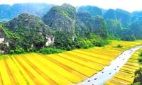 La sensibilisation à la nouvelle ruralité dans la province de Ninh Binh