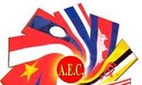 Les pays de l'ASEAN renforcent l'intégration économique