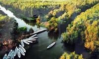 Le tourisme flottant dans le delta du Mékong