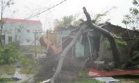 Réparation des dommages causés par le typhon Nari