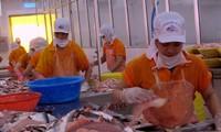 Le Vietnam et le Brésil donnent un nouvel élan à leur commerce bilatéral
