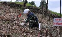 Lancement d'un projet de déminage à Lang Son et Cao Bang
