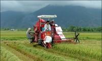L'agriculture vietnamienne à l'heure de l'intégration: opportunités et défis