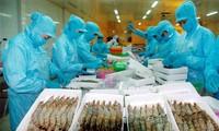 Le Vietnam table sur 6,7 milliards de dollars d'exportations aquicoles en 2014