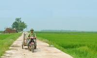 Nguyên Thi Tham, celle qui oeuvre pour les intérêts communautaires