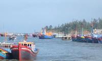 Les pêcheurs de Quang Ngai poursuivent toujours leur virée en mer