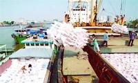 Le Vietnam exporte toujours plus vers l'Afrique