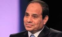 Egypte : Célébration du premier anniversaire des manifestations contre Mohamed Morsi