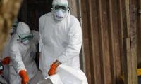 Le virus Ebola a fait plus de 2 400 morts