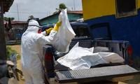 Ebola a fait plus de 2800 morts en Afrique de l'Ouest