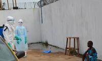 Ebola: l'épidémie «explose», le Liberia agite le spectre de la guerre civile