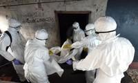 Ebola: L'Espagne promet de la transparence, Washington parle de crise mondiale