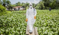 L'épidémie d'Ebola ralentit au Liberia, selon l'OMS
