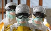 L'ONU constate des progrès dans la lutte mondiale contre Ebola