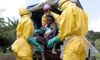 Ebola: l'OMS pense «pouvoir prendre le dessus» après un 1er but atteint