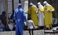 Ebola : la Sierra Leone est le pays qui compte le plus grand nombre de cas