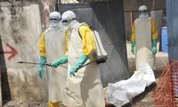 Ebola : Le Cuba accomplit sa mission internationale en Afrique de l'Ouest