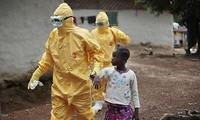 La conférence de l'UA souligne le rétablissement post-Ebola