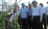 Vu Van Ninh en visite de travail à Thai Binh