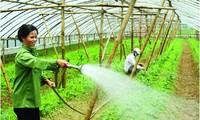 Investir davantage dans le développement agricole et rural