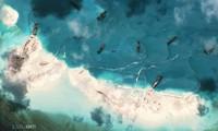 Mer Orientale : la Cour d'arbitrage de La Haye compétente